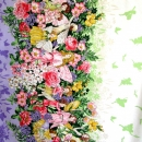 Fairy Dream Border, Flower Fairies