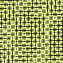 Basic,grün-natur kariert mit schwarzem Gitter